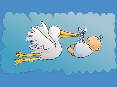 baby_stork_boy