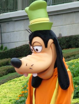 Is this Goofy, or does it just appear to be so?