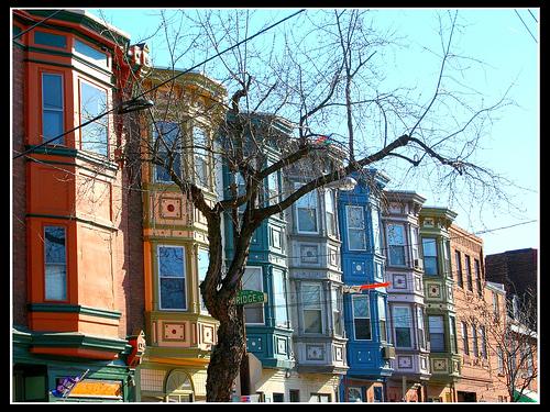 houses Tim